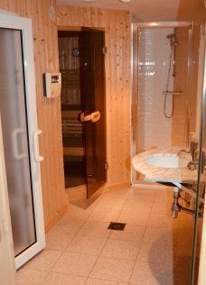 Basement - steam room, sauna and shower.