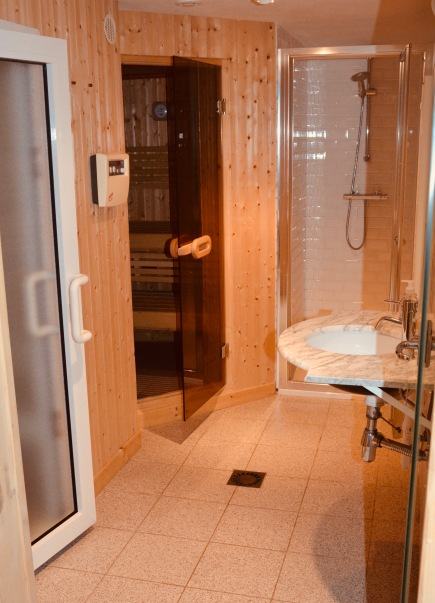 Basement - steam room, sauna and shower.